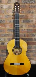 Flamenco Guitar Solea